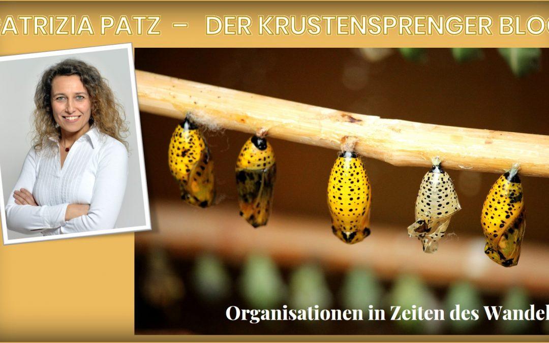 Organisationen in Zeiten des Wandels